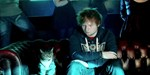 Ed Sheeran gets 'Drunk' with his cat